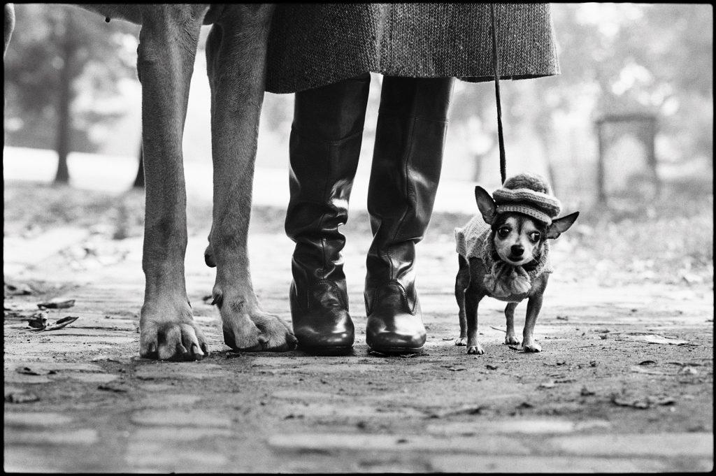 Elliott Erwitt, New York City, USA, 1955. © Elliott Erwitt