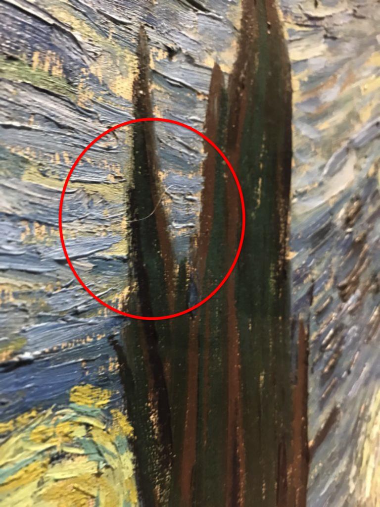 Dettaglio dell'opera La Notte Stellata, di Vincent Van Gogh (1889). Aguzzando la vista, si può notare il pelo grigio cerchiato in rosso. Photography by Nate Freeman. Courtesy of: Artnet