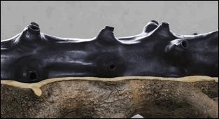 Giuseppe Penone – Incidenze del vuoto