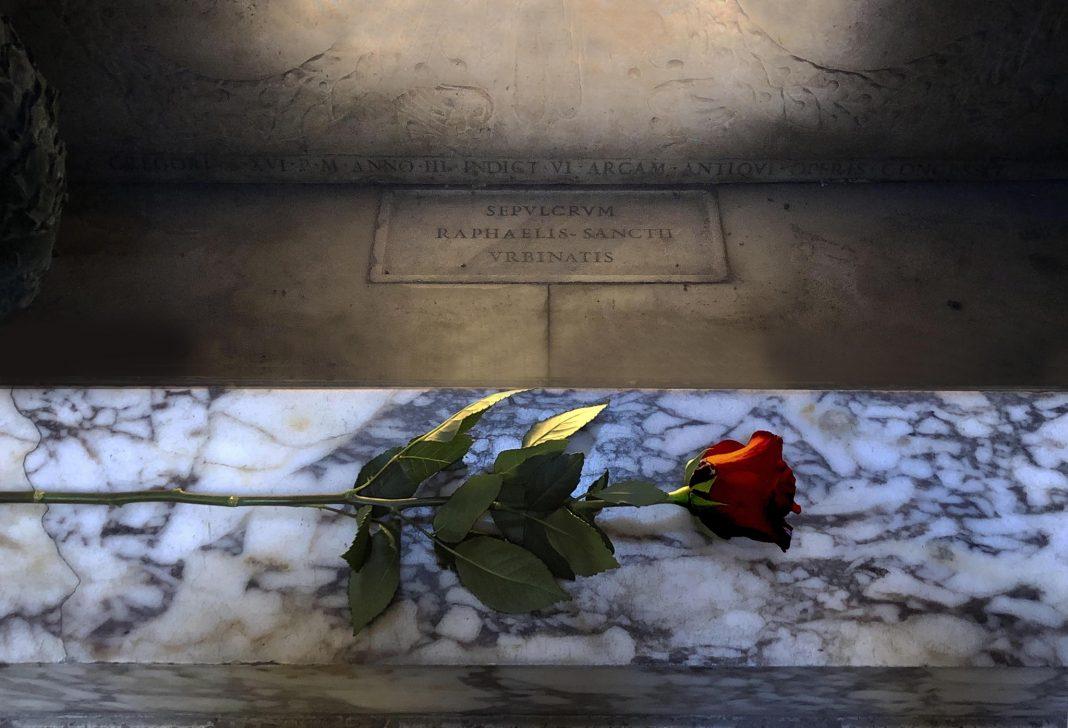 Una rosa per il cinqecentenario di Raffaello