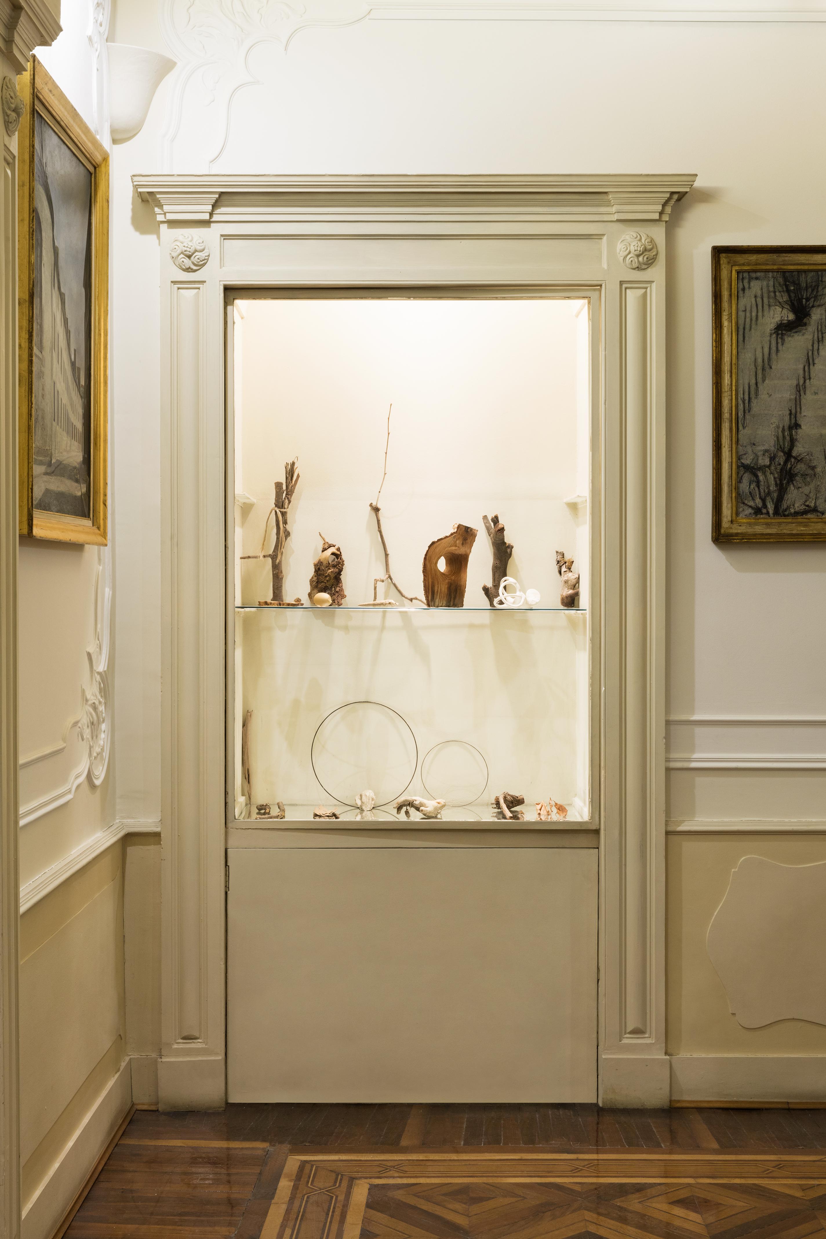 Nelle vetrine: racc olta di reperti naturali dallo studio, scultura in gesso , Fondazione Adolfo Pini 2019, credit by Andrea Rossetti