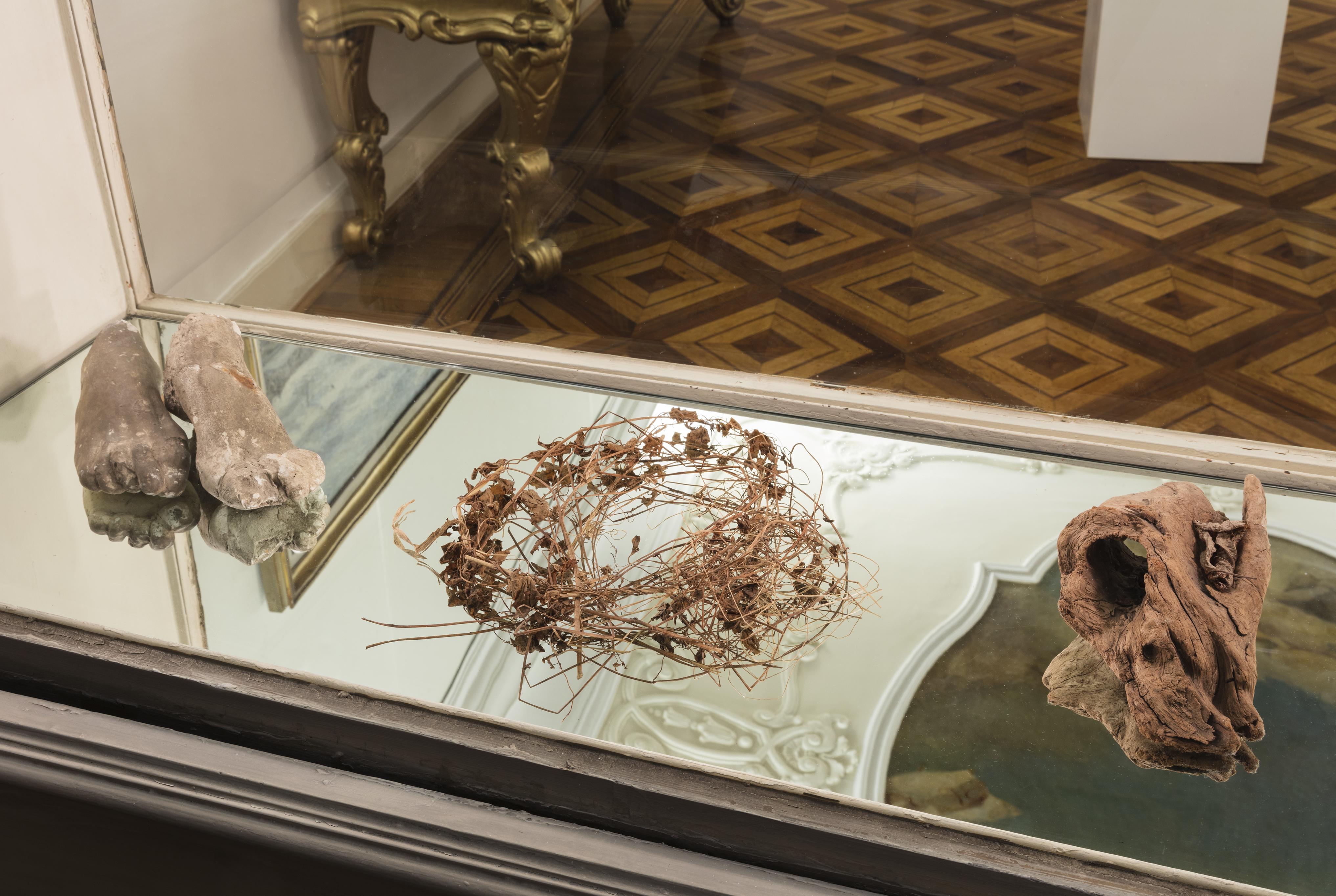 Nelle vetrine: raccolta di reperti naturali dallo studio, scultura in gesso. Fondazione Adolfo Pini 2019, credit by Andrea Rossetti