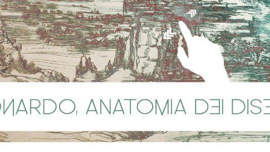 Leonardo – Anatomia dei disegni