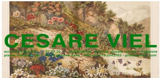 Cesare Viel – Scrivere il giardino