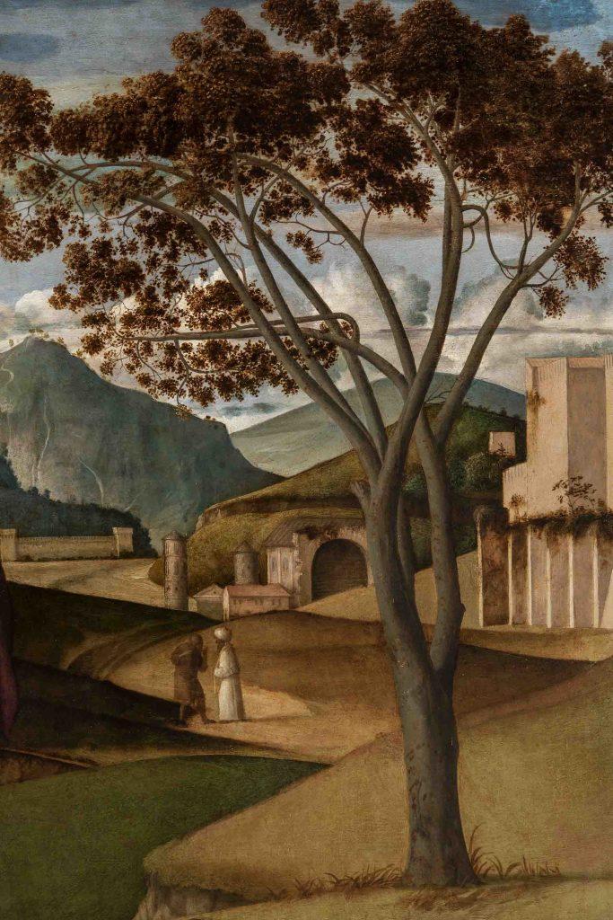 Trasfigurazione di Bellini a Capodimonte
