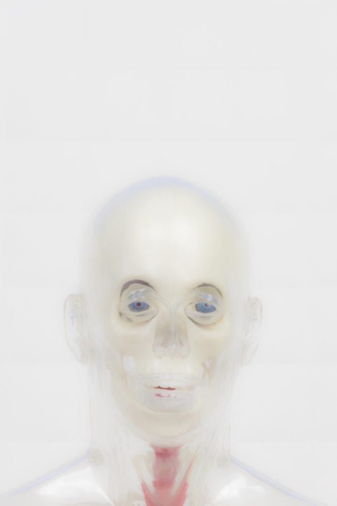 Luca Gilli, Neo Sapiens, courtesy l'artista e Paola Sosio Arte Contemporanea