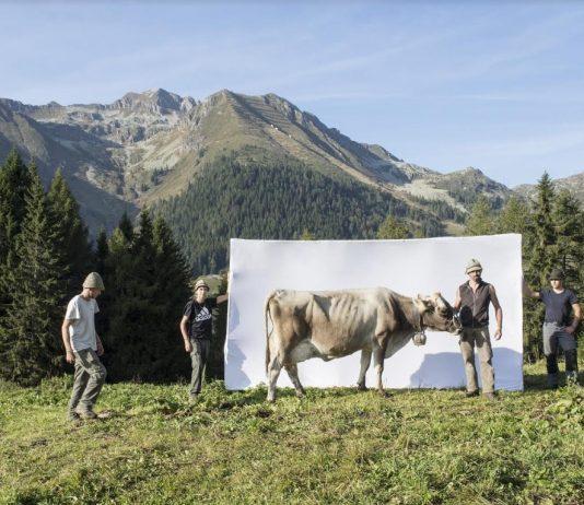 Marco Mazzoleni – Segni e Sogni d'alpe. Passione, orgoglio e resilienza