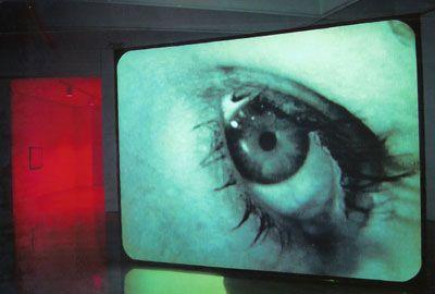 Douglas Gordon, 24 hour Psycho, 1993