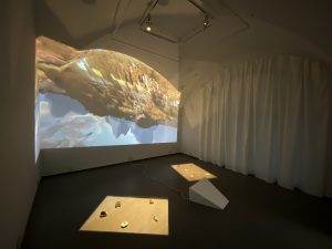 Alix Desaubliaux, Geographies, 2020, series of eleven videos (1080p color, stereo) and eleven sculptures, plexiglas, wood and painting, variable dimensions. Exhibition view, Selphish, Mécènes du sud Montpellier-Sète, 2020. Photo by Thierry Fournier and Pau Waelder