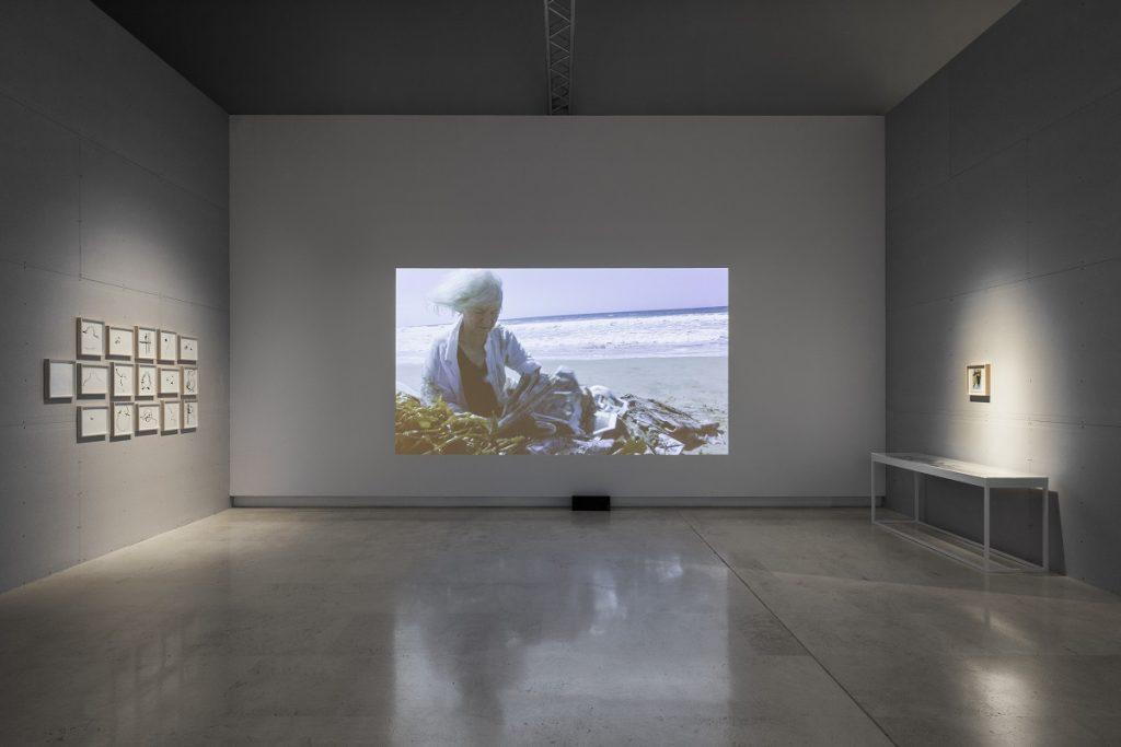 Simone Forti, veduta dell'allestimento, Quadriennale d'arte 2020 FUORI, courtesy Fondazione La Quadriennale di Roma, foto DSL Studio
