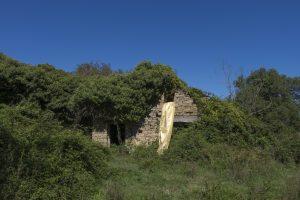 Gola Hundun, Habitat