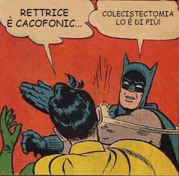 Se a parole non vi convince, Vera Gheno ha anche confezionato questo brillante meme sul tema della cacofonia.