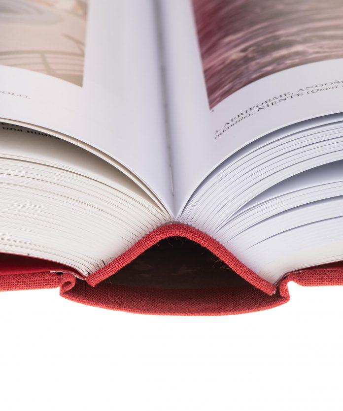 Psicoenciclopedia Possibile, Gianfranco Baruchello, 2020,© Treccani Arte 4