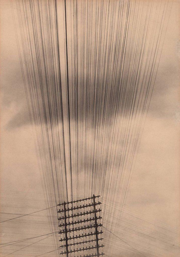 Tina Modotti, Telephone Wires, Mexico , 1925. Per gentile concessione del Museum of Modern Art, New York