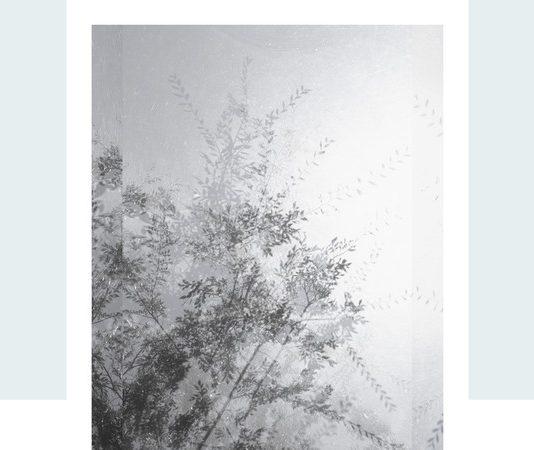 Luisa Lambri – Autoritratto