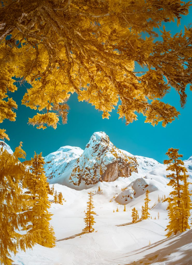 Touching the Sublime by Tomas Jirku_categoria infrared