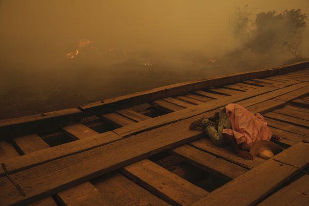 Ambiente, Storie, 1° premio Pantanal Ablaze © Lalo de Almeida, Brasile, per Folha de São Paulo Nel 2020 quasi un terzo della regione brasiliana del Pantanal – la più grande zona umida tropicale e con praterie allagate del mondo – è stata interessata dagli incendi.