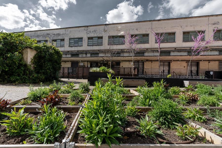 Botanica temporanea manifattura tabacchi