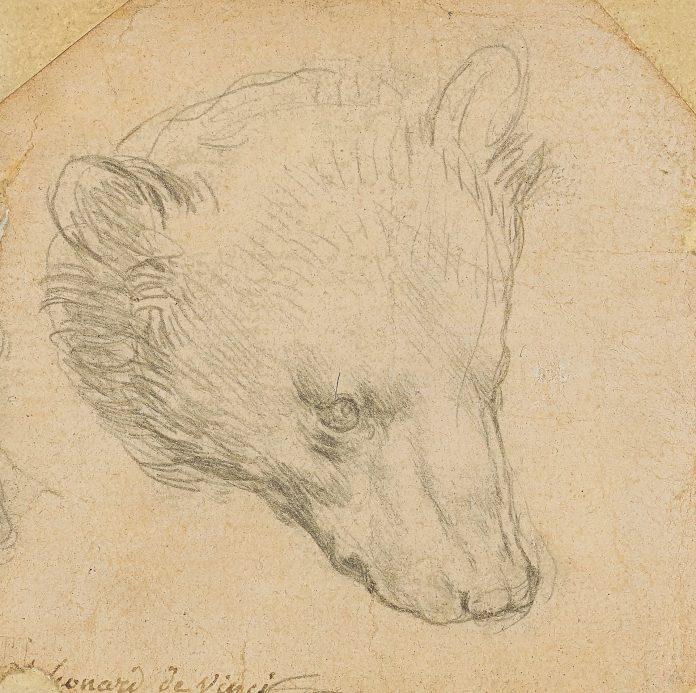Leonardo record