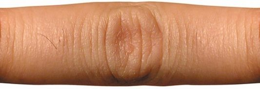 Bidito (designer's finger)