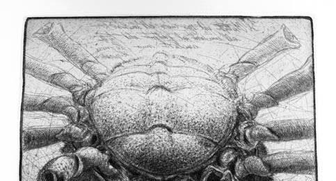 Visioni Marine – Tra fantasia e realtà. I bestiari marini nelle incisioni della Biblioteca Marucelliana