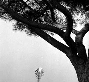 Maurizio Finotto – Ritorno alle origini