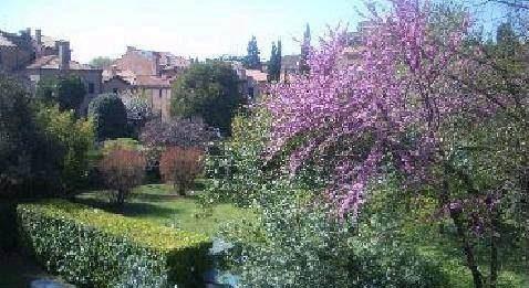 Genius loci: i giardini segreti di Venezia