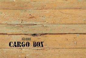 Nemanja Nikolic – Cargo-Box. Scenografia di un viaggio