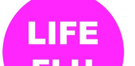 Third Life. La Terza Vita