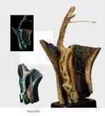 Pasquale Ciao – La radice e il mito. Magie e sculture