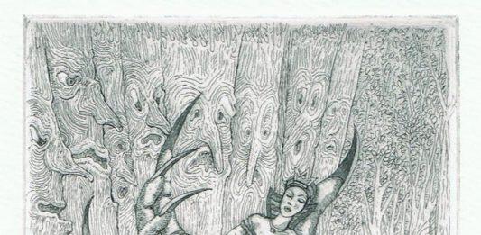 Il bosco stregato