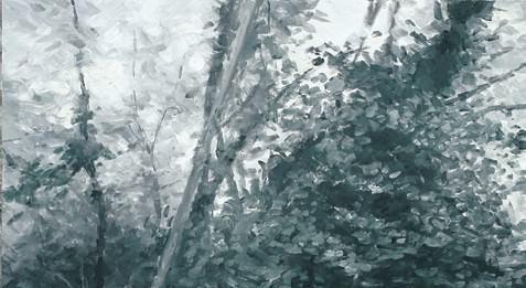 Claudio Carli – La belle au bois