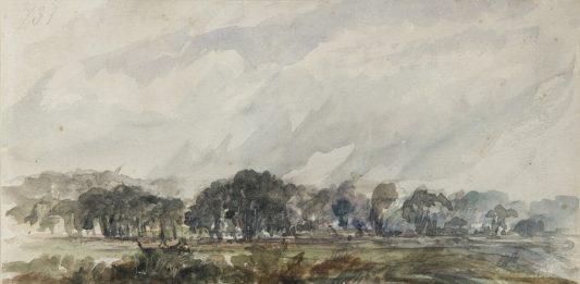 Il paesaggio disegnato.  John Constable e i maestri inglesi nella raccolta Horne