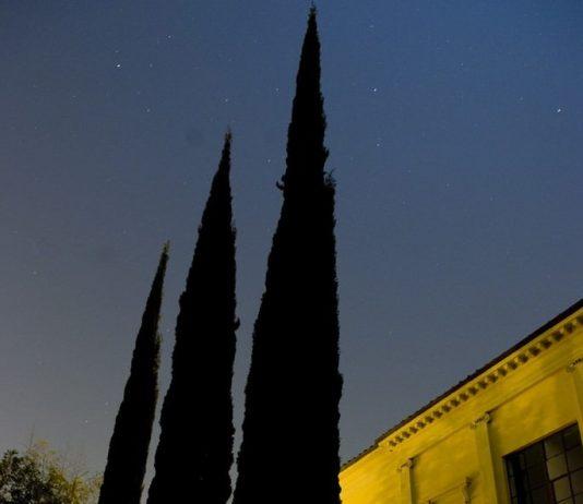 Sempre un inizio. Villa Romana a Firenze: 105 anni di residenze per artisti