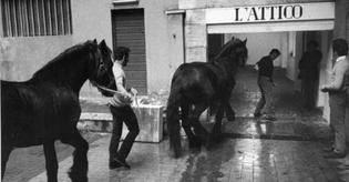 MACROradici del contemporaneo – L'Attico di Fabio Sargentini 1966 –1978