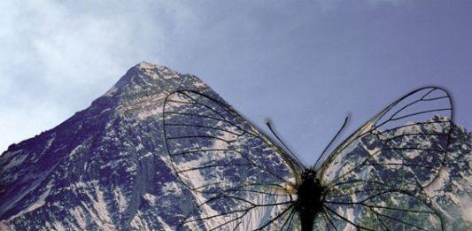 54ma Biennale di Venezia. Padiglione Tibet