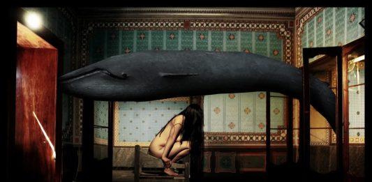 Whaleless