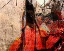 Valentina Talamonti – Metamorfosi