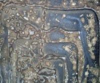 CosmoGRAFIE tra Segno, Materia e Visione