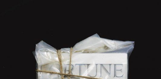 Christo e Jeanne Claude – Opere nella collezione Wurth