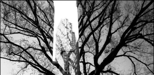 Hugues Roussel – Inverse Landscape. New York # Jungle City