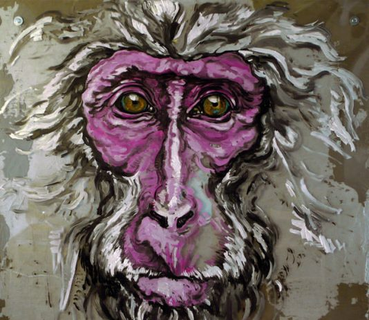 Simone Fugazzotto – The Monkey Show