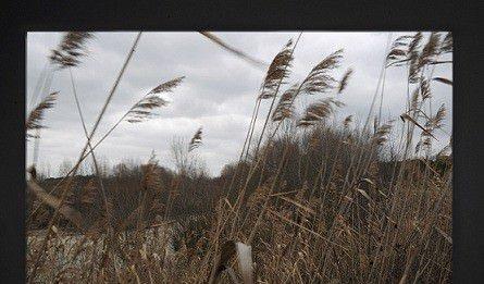 Premio Arte Rugabella 2012. Sulla Natura