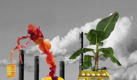Anna Galtarossa /  Daniel González  – Cloud Factory