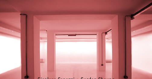 Gianluca Capozzi / Gordon Cheung – Brownian Motion