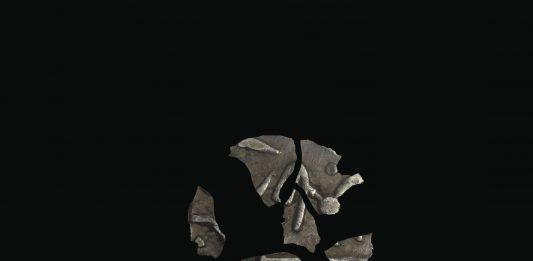 Sonya Orfalian – Homo sine pecunia est imago mortis