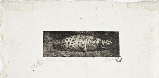Rembrandt visto da Morandi