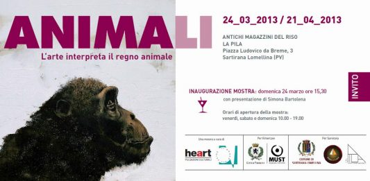 Animali. L'arte interpreta il regno animale