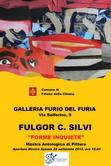 Fulgor C. Silvi – Forme inquiete