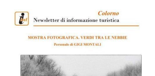 Gigi Montali – Verdi tra le nebbie